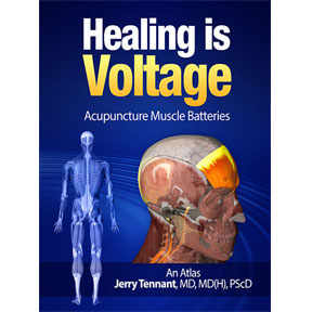 Acupuncture Muscle Batteries